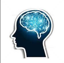 真剣に貯蓄したいならコレ!3つ脳について正しく知り活用する